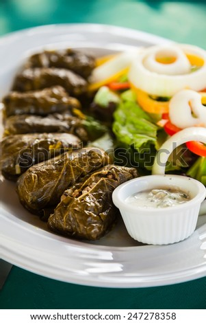 traditional appetizer dolma - grape leaves stuffed with minced meat served with garlic yogurt sauce and fresh vegetables - stock photo