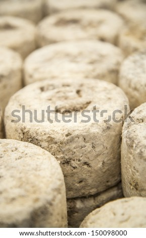 Traditional artisan cheese of goat, sheep and cow - stock photo