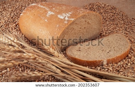 Traditional bread with the grain on brightly.