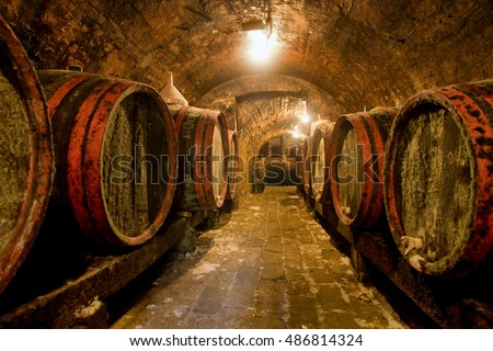 Traditional cellar with bottles and wooden wine barrels