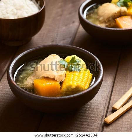 Traditional Chilean Cazuela de Pollo (Cazuela de Ave) soup made of chicken, sweet corn, pumpkin, potato, coriander, photographed with natural light (Selective Focus, Focus in the middle of the soup) - stock photo