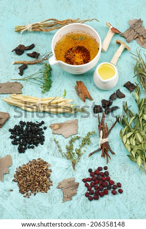 Traditional chinese herbal medicine ingredients, close-up - stock photo