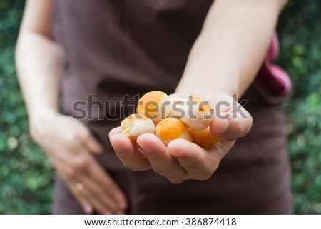 Traditional chinese yellow mini cakes on hand of baker, stock photo