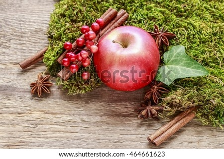 Traditional christmas decoration with red apple, cinnamon sticks and moss on wooden background, copy space.