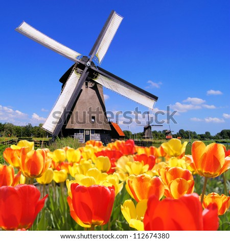 Traditional Dutch windmills with vibrant tulips in the foreground, The Netherlands - stock photo