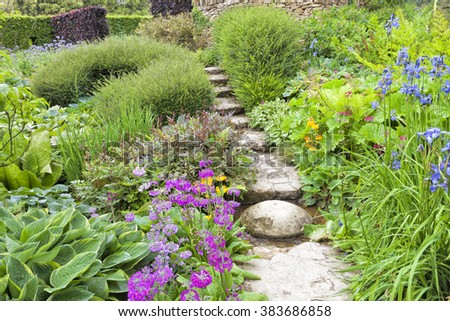 Traditional English garden with stone steps going up through colorful summer blue, pink flowers, green foliage, ending at the top with hedge, shrubs and lavender - stock photo