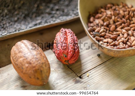 Traditional farm in the Dominican Republic where cocoa,chocolate and coffe are produced in the old fashion way. - stock photo