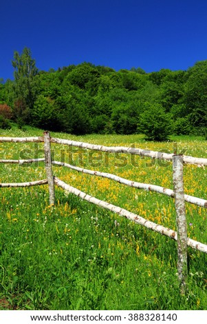 Traditional fence of an alpine garden in the Carpathians, Romania, Europe