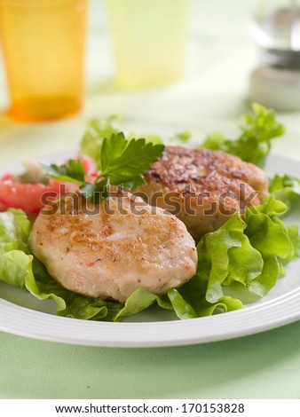 Traditional fish or meat  rissole with sauce and vegetable, selective focus