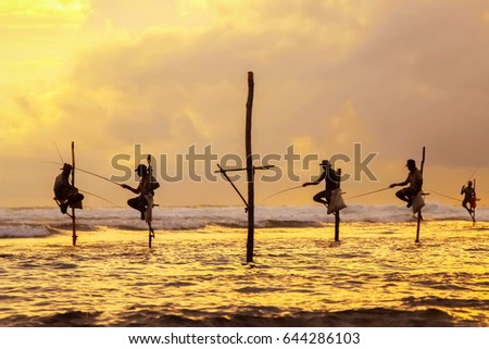 Traditional fishermen on sticks at the sunset in Sri Lanka.