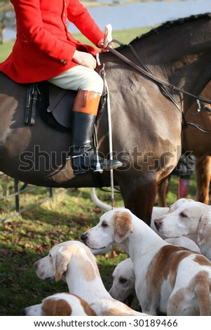 traditional fox hunting