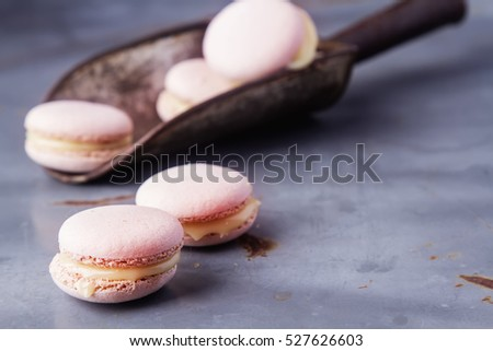 Traditional French sweets. Pink macaroon on a metal tray. Gray background