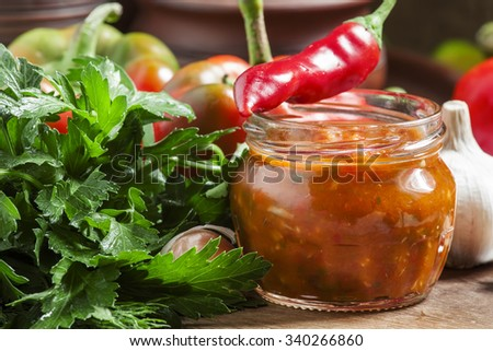 Traditional Georgian sauce with hot pepper - adjika, selective focus