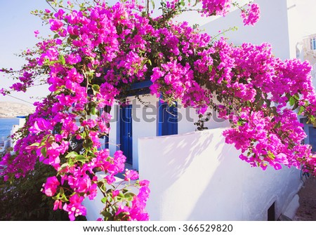 Traditional greek house with flowers in Paros island, Greece - stock photo