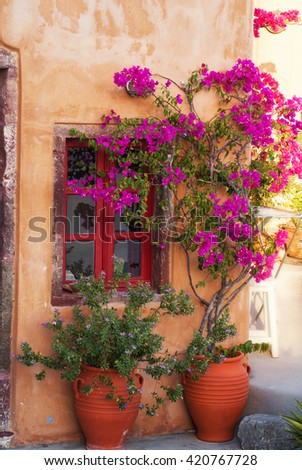 Traditional greek house with flowers in Santorini island, Greece. - stock photo