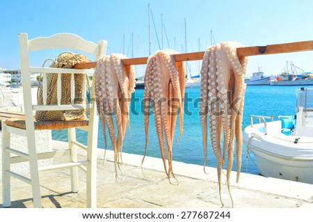 Traditional greek sea food - octopus, drying in the sun, Naxos island, Cyclades, Greece - stock photo