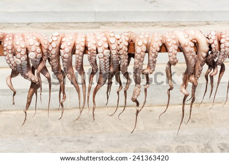Traditional Greek sun-dried octopus on Paros island - stock photo