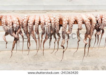 Traditional Greek sun-dried octopus on Paros island - stock photo