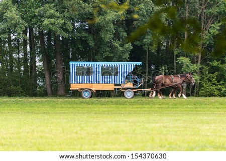 Traditional Horse and Carriage in front of a forest in Bavaria, Germany - stock photo