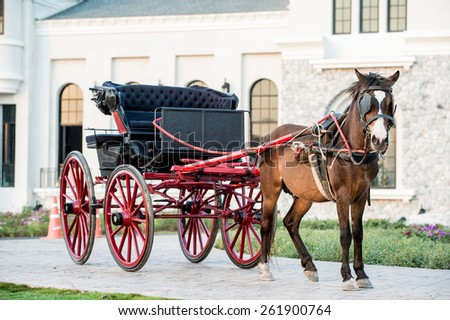 Traditional Horse Carriage, Lampang, Thailand,Horse ride in Killarney National Park  - stock photo