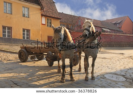 Traditional horses and wagon at the entrance in the historical fortress of Sighisoara,Transylvania,Romania.