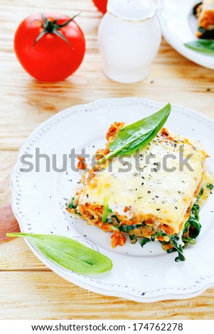 traditional Italian lasagna, food closeup - stock photo