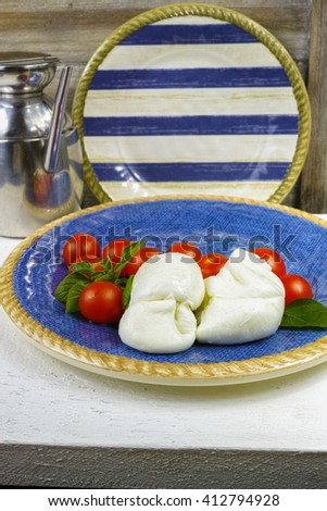 Traditional italian mozzarella buffalo with tomatoes and basil on blue-white plate, copy space - stock photo