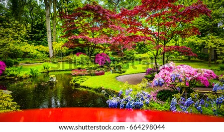 Japanese garden pond stock images royalty free images for Traditional japanese garden