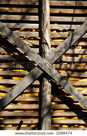 traditional maize crop storage in old barn - stock photo