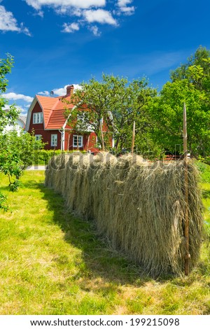 Traditional old decoration in Swedish garden