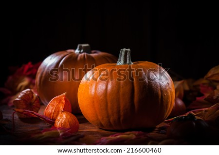 Traditional pumpkins for Thanksgiving and  Halloween - stock photo