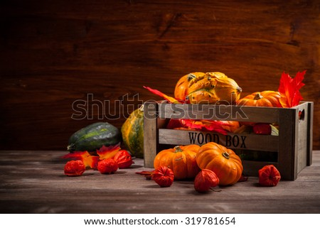 Traditional pumpkins for Thanksgiving and Halloween with copy space - stock photo