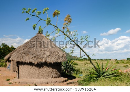 Traditional round mud house in africa