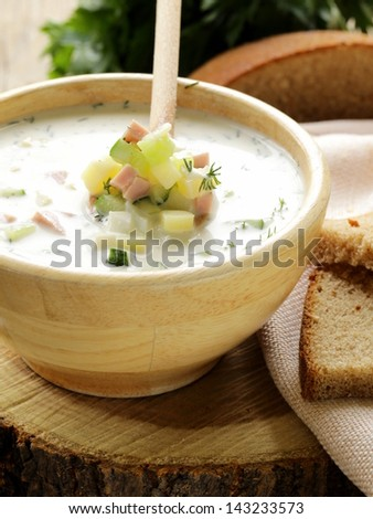 Traditional Russian cold soup with vegetables (okroshka)
