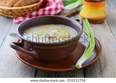 Traditional russian soup with pickled cucumbers and pearl barley - stock photo