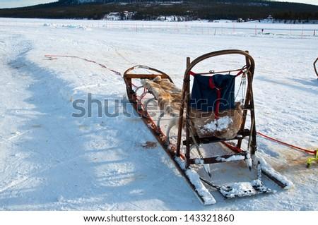 traditional  Sami national sledge - stock photo