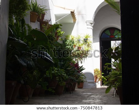 Traditional Spanish Patio Full Of Clay Pots With Green Plants