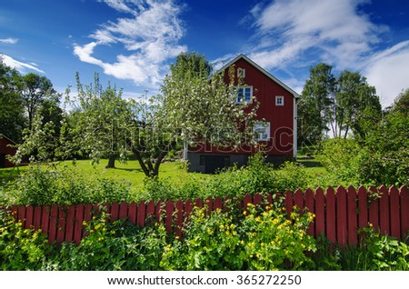 Traditional swedish garden with red wooden house, blue sky and apple tree at spring, holiday vacation natural background - stock photo