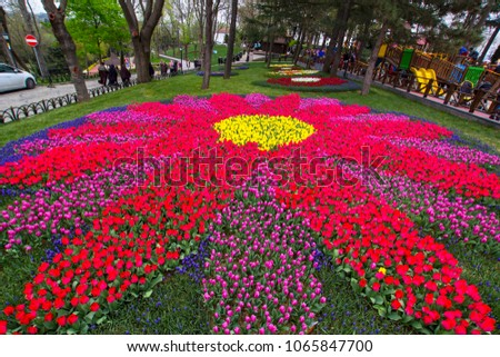 stock-photo-traditional-tulip-festival-i