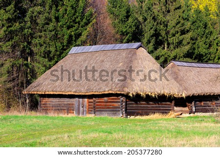 traditional ukrainian wooden house in forest - stock photo
