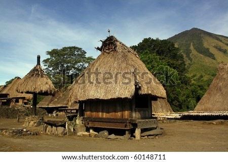 Traditional vilage in Bajawa (Flores - Indonesia)