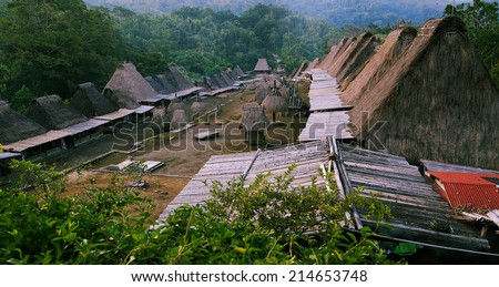 Traditional village Bena in Flores island, Indonesia - stock photo