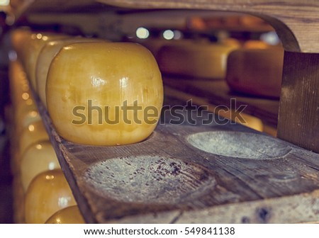 Traditional wooden cheese boards with golden edam cheeses