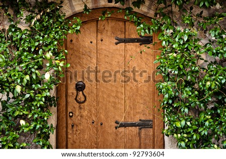 Traditional wooden door with green plant - stock photo