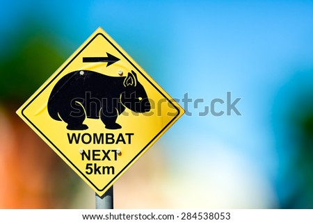 Traffic sign at the road side warns the drivers about wombat crossing next 5 kilometers