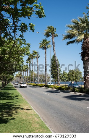 Traffic, tourists, river and palm trees in Perth,Western Australia/Road in Perth/PERTH,WA,AUSTRALIA-NOVEMBER 17,2016: Road, palm trees and tourists by Swan River in Perth,Western Australia