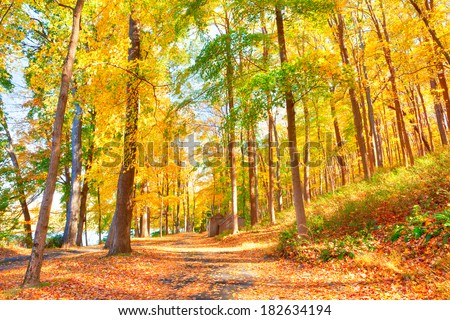 Trail in Delaware Water Gap  in Autumn with colorful foliage. - stock photo