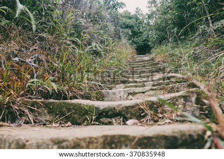 trail in forest of Hong Kong. - stock photo