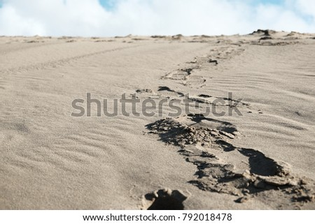 trail in sand