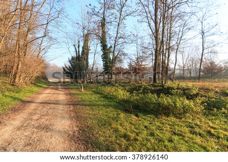 trail in the park of Lura - Lomazzo